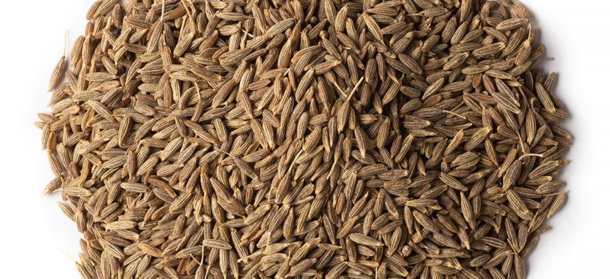 Does black seed oil break a fast?